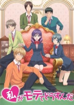Watashi ga Motete Dousunda anime / Boys, Please Kiss Him Instead of Me anime